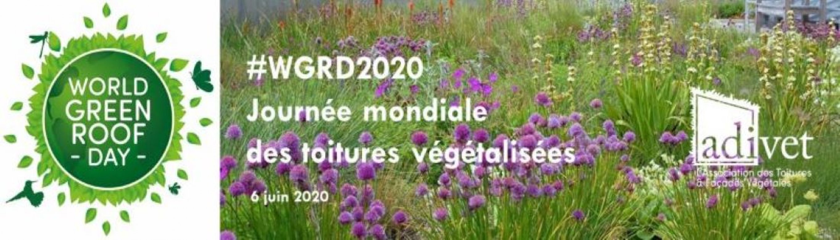 World Green Roof Day 2020 et ADIVET